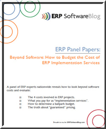 White Paper: Beyond Software: How to Estimate the Cost of ERP Implementation Services
