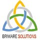 View Briware Solutions Inc. 's Profile