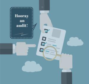 AuditGraphic_ERPImplementation
