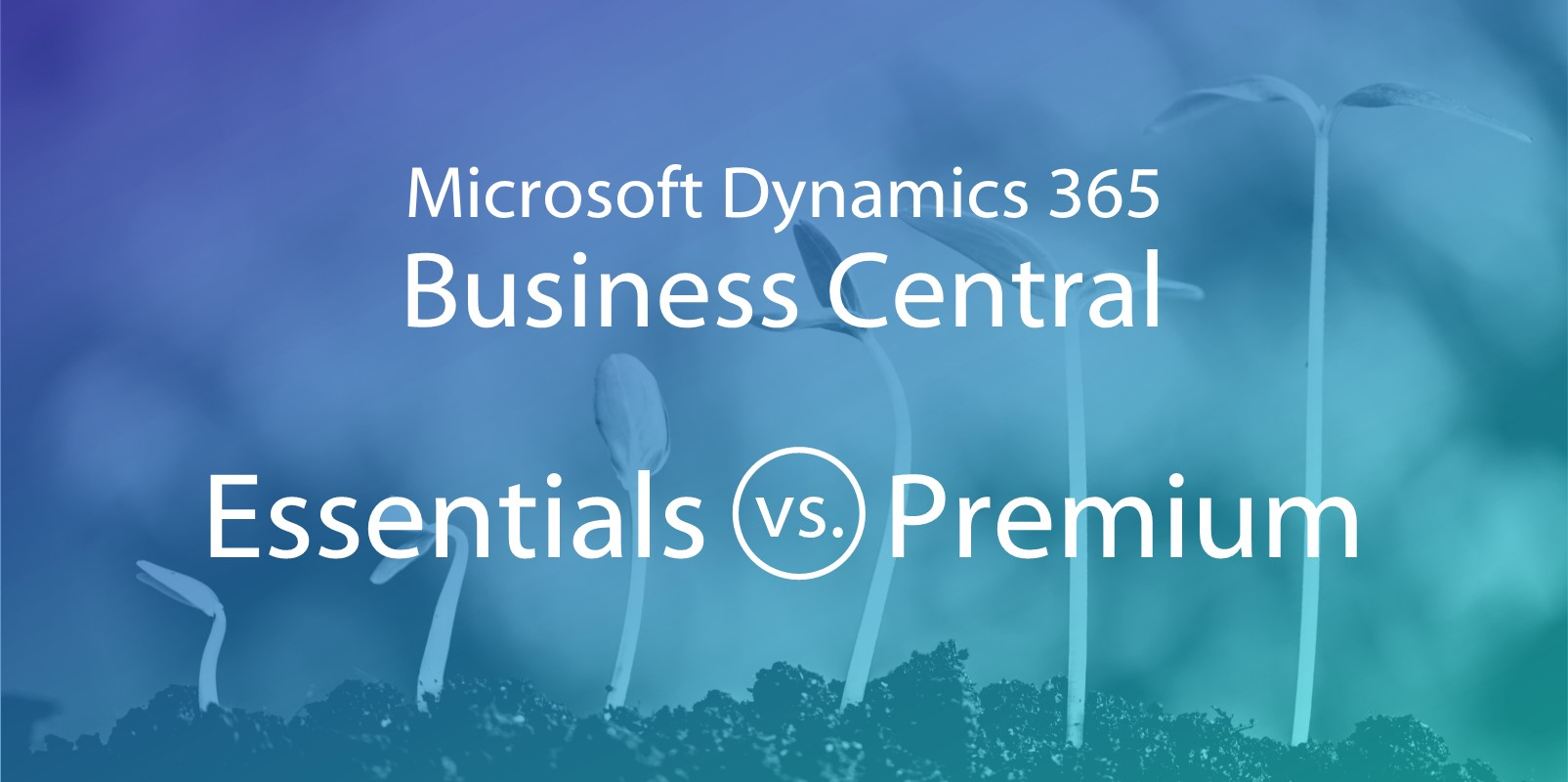 Microsoft Dynamics 365 Business Central: Essentials or Premium?