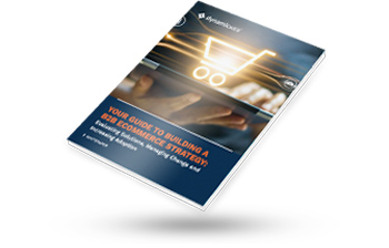 Dynamicweb Whitepaper: Your Guide to Building a B2B eCommerce Strategy