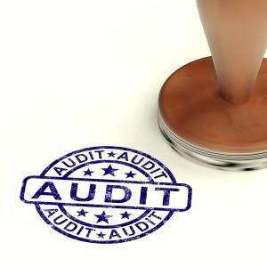 audit-300x300