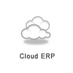 iCepts Home Page-Cloud ERP