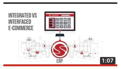 Integrated E-Commerce vs  Interfacing E-Commerce Solutions